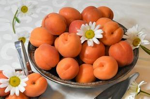 apricots-4219809_1920.jpg